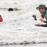 Surf Hire and lessons